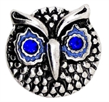 Snap Owl light blue eyes