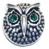 Snap owl  green eyes